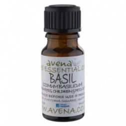 Basil Premium Essential Oil - 10ml