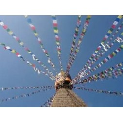Genuine Large Tibetan Prayer Flags ( Lung Ta)