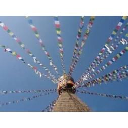 Genuine Extra Large Tibetan Prayer Flags ( Lung Ta )