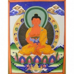 Amitabha, the Buddha of Comprehensive Love  Thangka Painting
