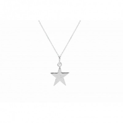 Five Star Silver Charm