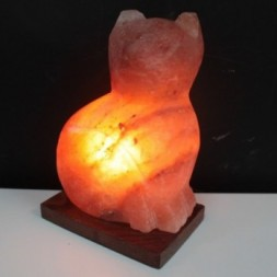 Animal Himalayan  salt lamp - Cat
