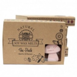 Box of 6 Wax Melts - Old Ginger