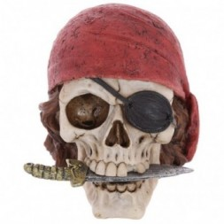 Pirate Skull  with Head Scarf