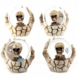 Skeleton Hand and Skull Snow Globe