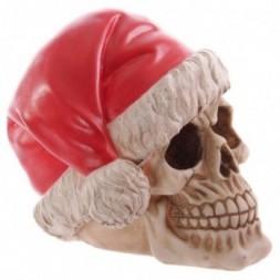 Skull  Wearing Santa Hat
