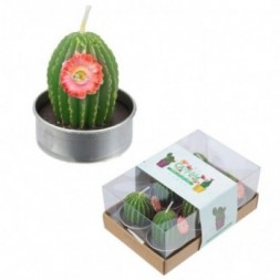 Mini Candles - Spiky Cactus with Flower Set of 6 Tea Lights
