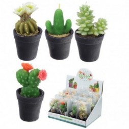 Mini Candles - Small Cactus in a Pot