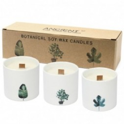 Botanical Candles, Large, - Marsh Viola - Pack of 3