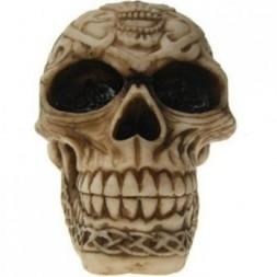 Chaos - Skull