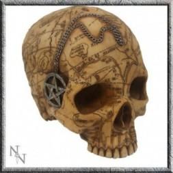 Salem Skull with Pentagram