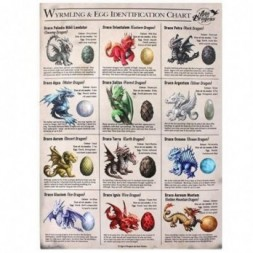 Dragon Egg ID Chart Canvas Picture