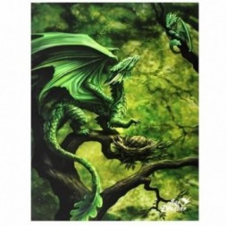 Forest Dragon Canvas Picture