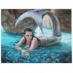 Mermaid Canvas Picture