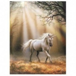 Unicorn in Woods Canvas Picture