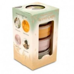 Cup Candles Woodland Spa - pack of 4