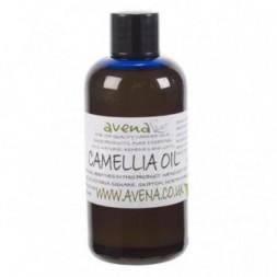 Camellia Carrier Oil - 5kg
