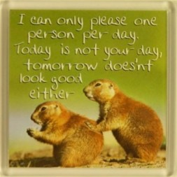I can only please one person per day Fridge Magnet