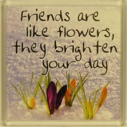 Friends are like flowers, they brighten your day Fridge...