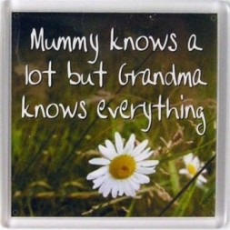 Mummy knows a lot but grandma knows everything Fridge Magnet
