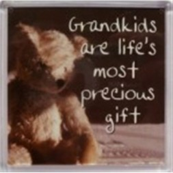 Grandkids are life's most precious gifts Fridge Magnet