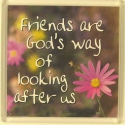 Friends are God's way of looking after us Fridge Magnet