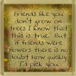 Friends like you don't grow on trees... Fridge Magnet