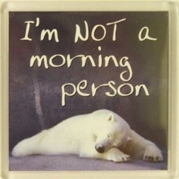 I'm not a morning person Fridge Magnet