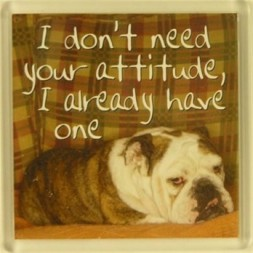 I don't need your attitude, I already have one Fridge Magnet