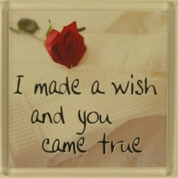 I made a wish and you came true Fridge Magnet
