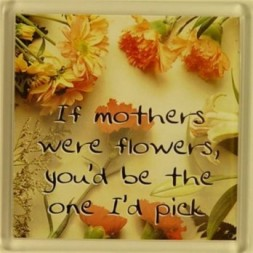 If mothers were flowers, you'd be the one I'd pick Fridge...