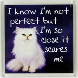 I know I'm not perfect but I'm so close it scares me...