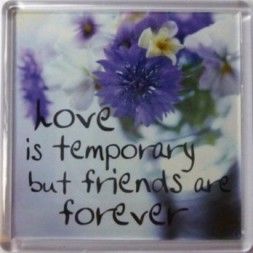 Love is temporary but friends are forever Fridge Magnet