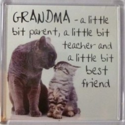 GRANDMA - a little bit parent, a little bit teacher......