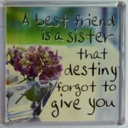 A best friend is a sister that destiny forgot to give you...