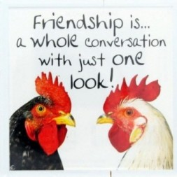 Friendship is a whole conversation Fridge Magnet