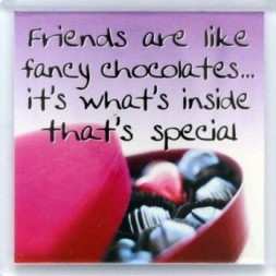 Friends are like fancy chocolates Fridge Magnet