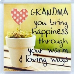 Grandma you bring happiness Fridge Magnet